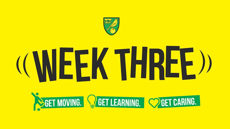 active-canaries-week-three-is-here