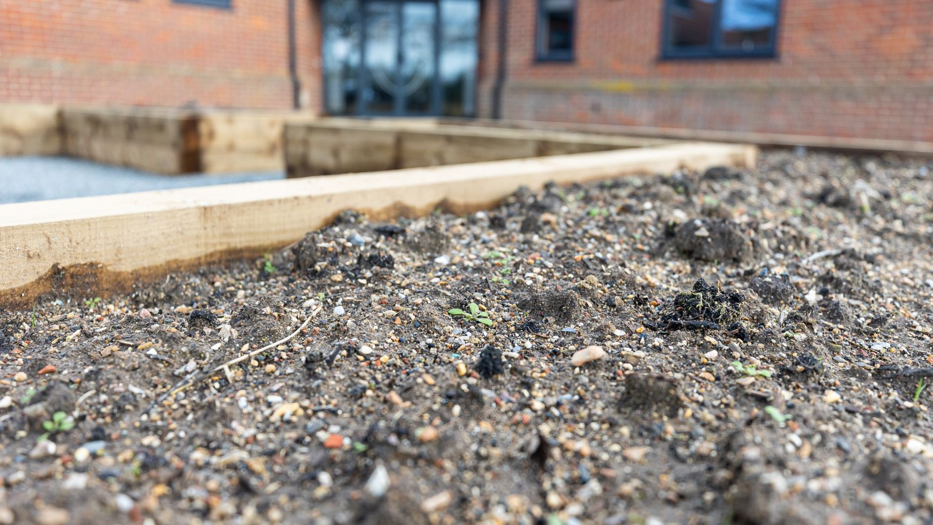 big-green-week-how-norwich-city-is-becoming-more-sustainable
