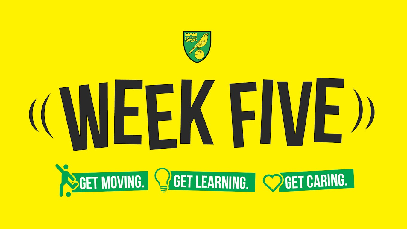 active-canaries-week-five-is-here