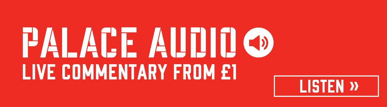 Palace Audio banner 20-21.jpg